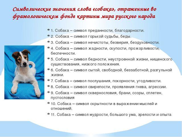 Символические значения слова «собака», отраженные во фразеологическом фонде к...