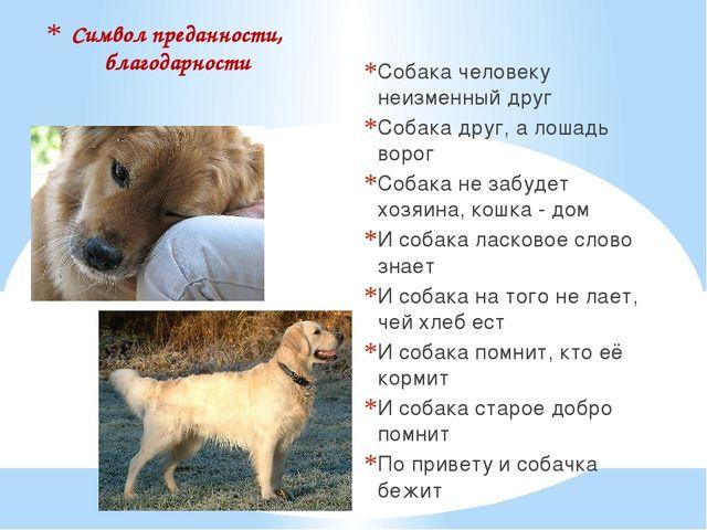 Символ преданности, благодарности Собака человеку неизменный друг Собака друг...