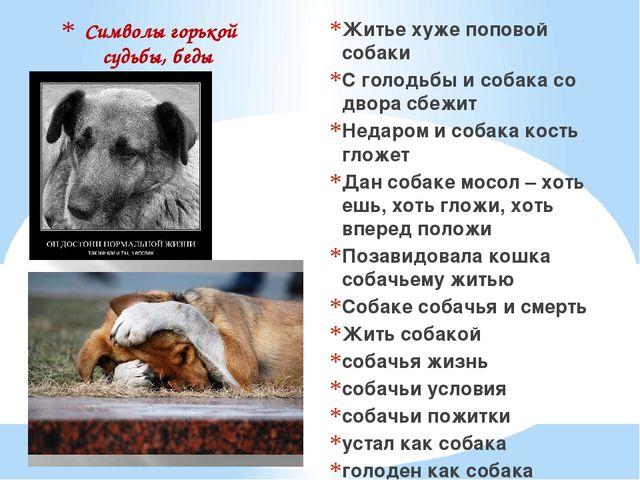 Символы горькой судьбы, беды Житье хуже поповой собаки С голодьбы и собака со...
