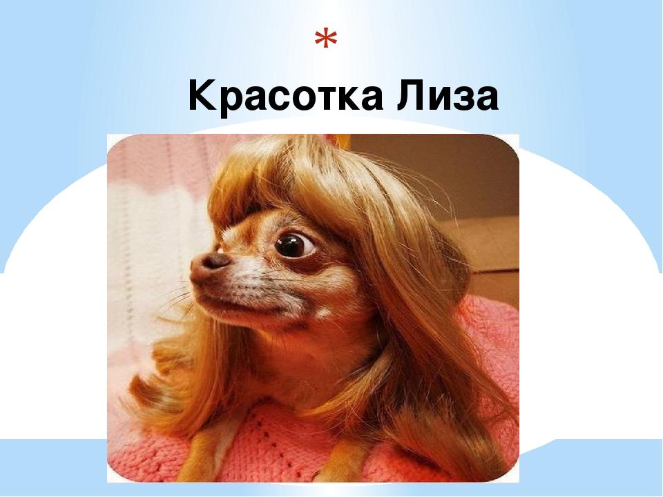 Красотка Лиза