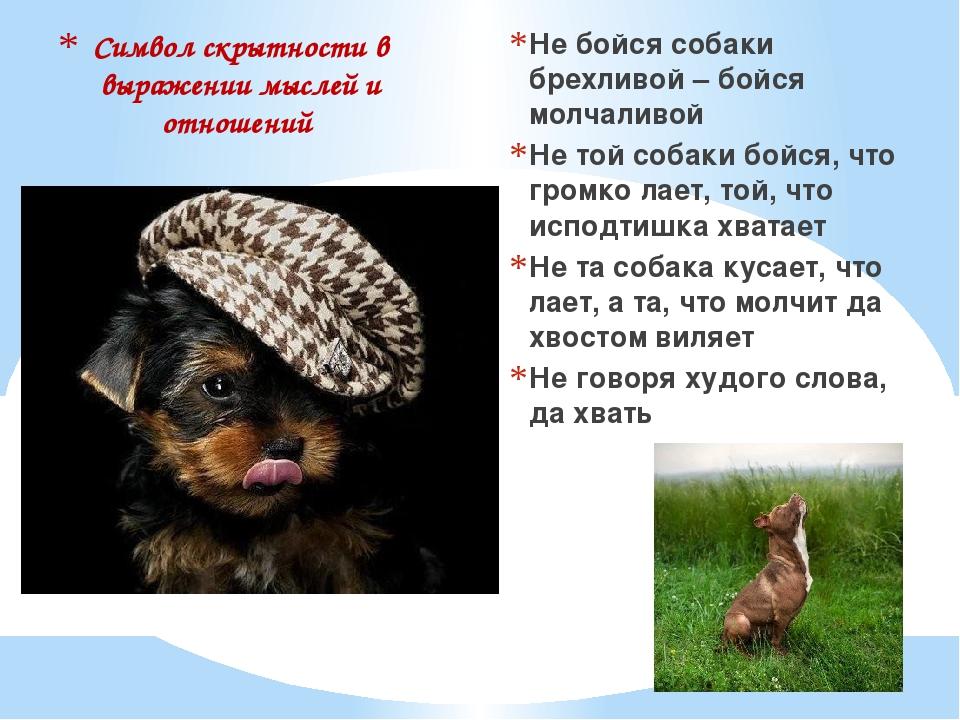 Символ скрытности в выражении мыслей и отношений Не бойся собаки брехливой –...