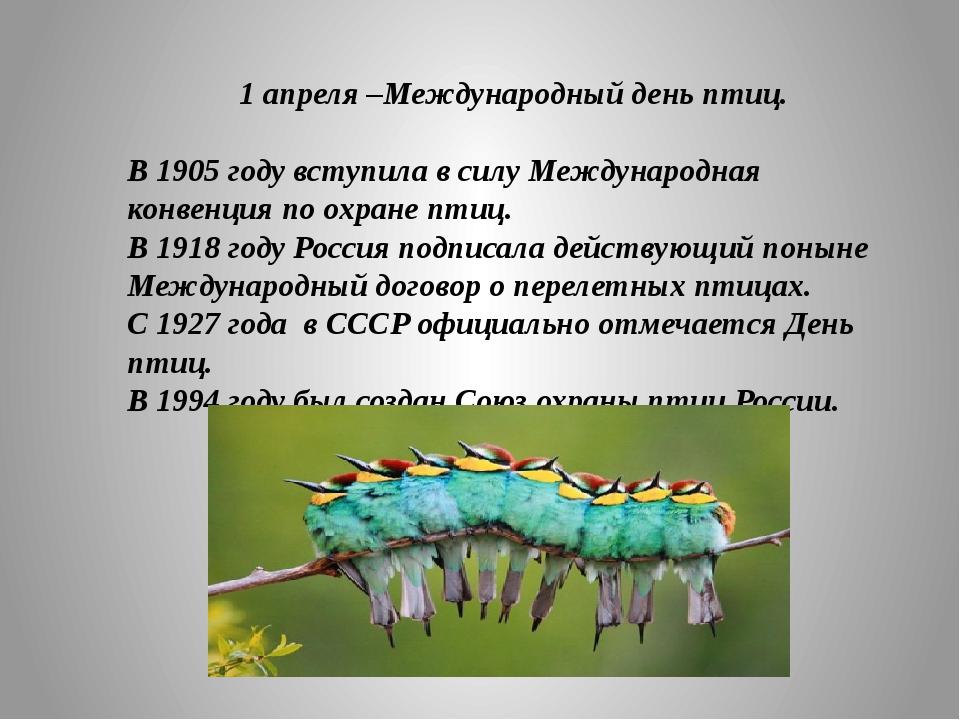 1 апреля –Международный день птиц. В 1905 году вступила в силу Международная...