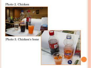 Photo 2. Chicken Photo 3. Chicken's bone