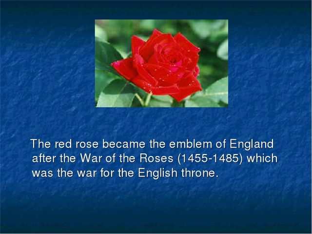 The red rose became the emblem of England after the War of the Roses (1455-1...