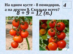 На одном кусте - 8 помидоров, а на другом 9. Сколько всего? 8 + 9 = 17 (п.) 4
