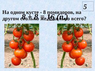 На одном кусте - 8 помидоров, на другом столько же. Сколько всего? 5 8 + 8 =