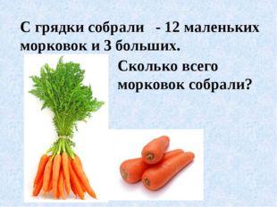 С грядки собрали - 12 маленьких морковок и 3 больших. Сколько всего морковок