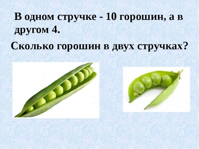 В одном стручке - 10 горошин, а в другом 4. Сколько горошин в двух стручках?