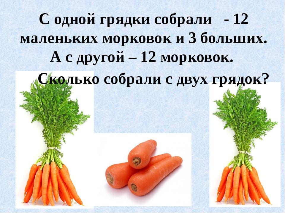 С одной грядки собрали - 12 маленьких морковок и 3 больших. А с другой – 12 м...