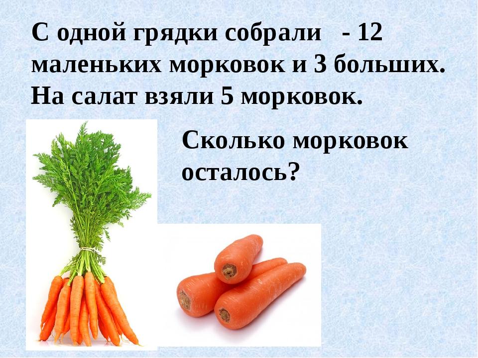 С одной грядки собрали - 12 маленьких морковок и 3 больших. На салат взяли 5...