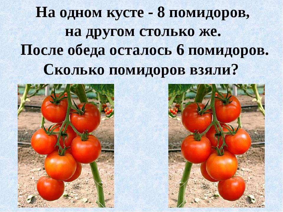 На одном кусте - 8 помидоров, на другом столько же. После обеда осталось 6 по...