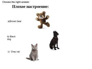 Плохое настроение: a)Brown bear b) Black dog c) Grey cat Choose the right ans