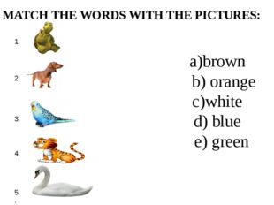 MATCH THE WORDS WITH THE PICTURES: a)brown b) orange c)white d) blue e) green