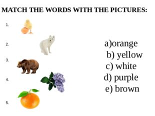 a)orange b) yellow c) white d) purple e) brown MATCH THE WORDS WITH THE PICTU