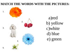 a)red b) yellow c)white d) blue e) green MATCH THE WORDS WITH THE PICTURES: 1