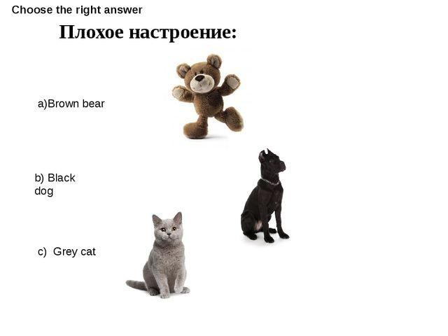 Плохое настроение: a)Brown bear b) Black dog c) Grey cat Choose the right ans...