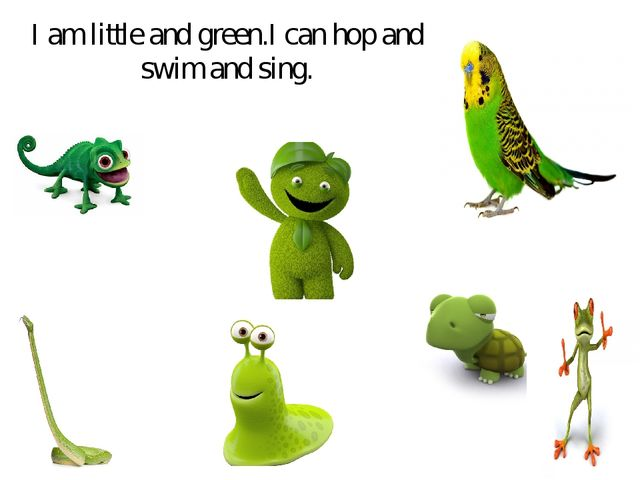 I am little and green.I can hop and swim and sing.