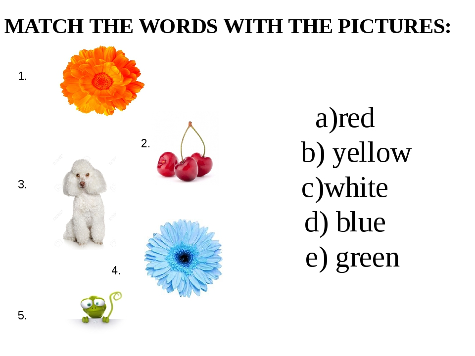 a)red b) yellow c)white d) blue e) green MATCH THE WORDS WITH THE PICTURES: 1...