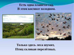 Только здесь леса шумят, Птиц скликая перелётных. Есть одна планета-сад, В эт