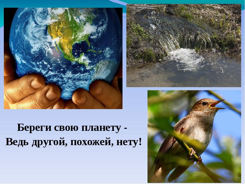 Береги свою планету - Ведь другой, похожей, нету!