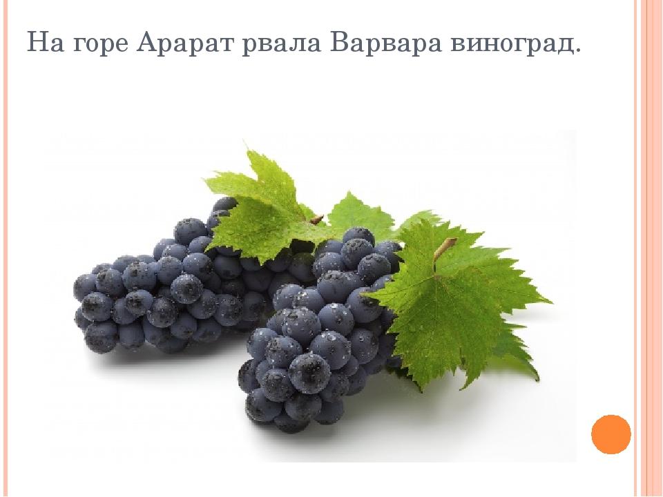 На горе Арарат рвала Варвара виноград.