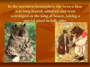 In the northern hemisphere the brown bear was long feared, admired and even