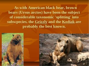 As with American black bear, brown bears (Ursus arctos) have been the subjec