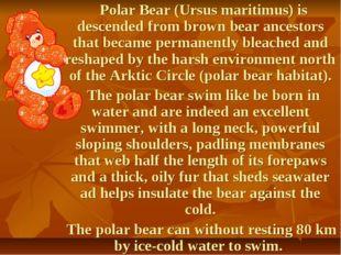 Polar Bear (Ursus maritimus) is descended from brown bear ancestors that bec