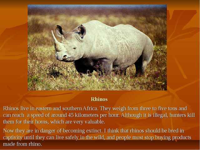 Rhinos Rhinos live in eastern and southern Africa. They weigh from three to f...