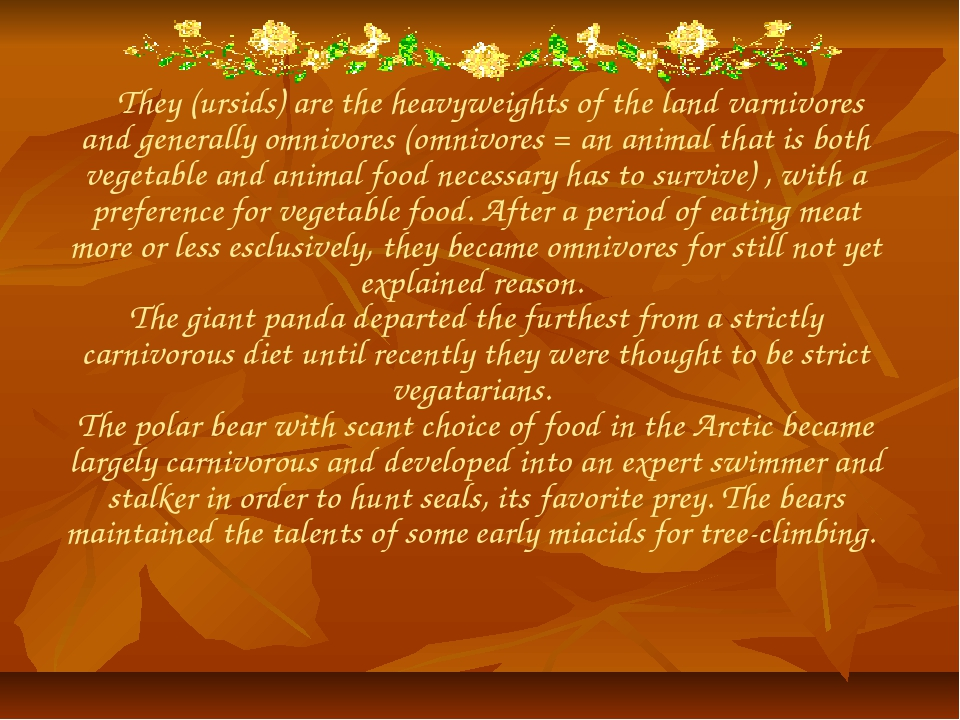 They (ursids) are the heavyweights of the land varnivores and generally omni...