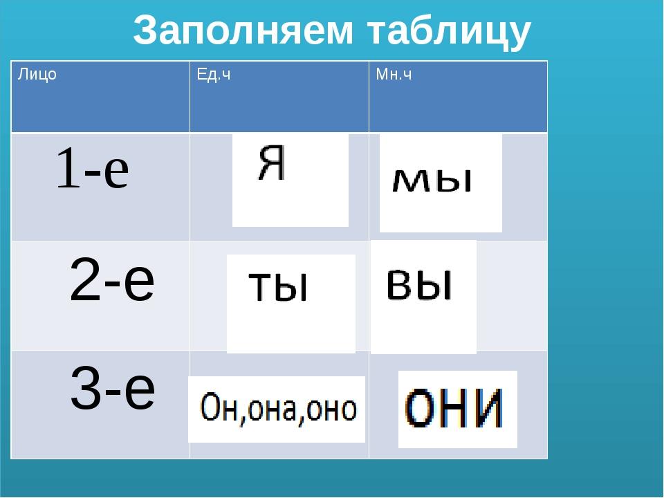 Заполняем таблицу Лицо Ед.ч Мн.ч 1-е 2-е 3-е