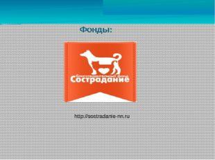 Фонды: http://sostradanie-nn.ru