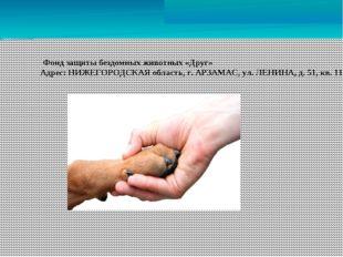 Фонд защиты бездомных животных «Друг» Адрес: НИЖЕГОРОДСКАЯ область, г. АРЗАМ