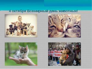 4 октября Всемирный день животных! Фото