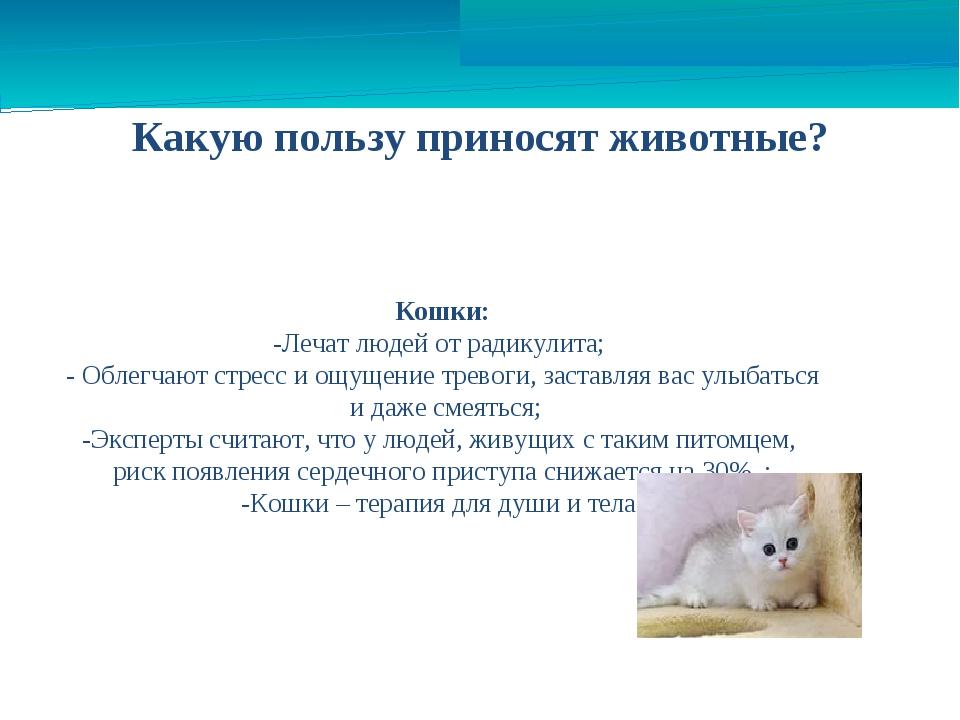 Какую пользу приносят животные? Кошки: -Лечат людей от радикулита; - Облегчаю...