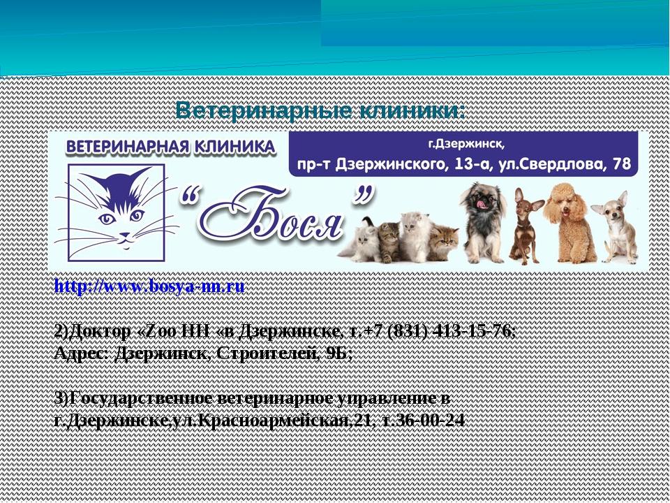 Ветеринарные клиники: http://www.bosya-nn.ru 2)Доктор «Zoo НН«вДзержинске,...