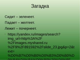 Загадка Сидит – зеленеет. Падает – желтеет. Лежит – почернеет. https://yandex