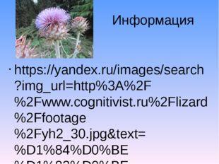Информация https://yandex.ru/images/search?img_url=http%3A%2F%2Fwww.cognitivi
