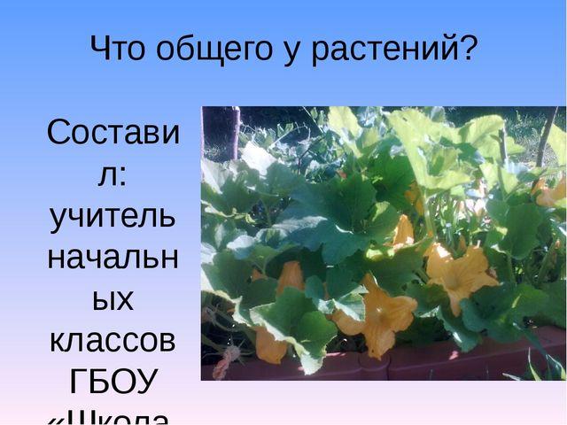 Что общего у растений? Составил: учитель начальных классов ГБОУ «Школа № 773...