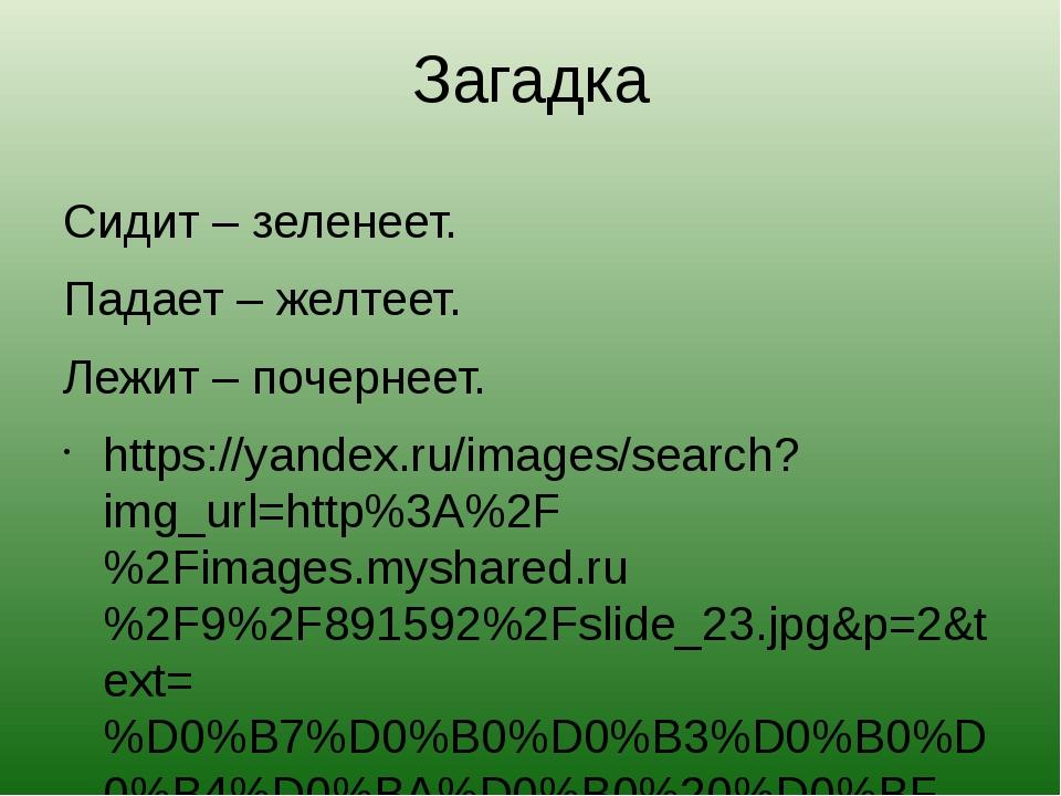 Загадка Сидит – зеленеет. Падает – желтеет. Лежит – почернеет. https://yandex...