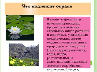 Что подлежит охране В целях сохранения и изучения природных процессов и явлен