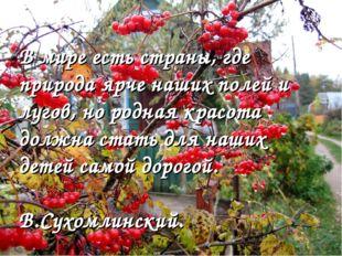 В мире есть страны, где природа ярче наших полей и лугов, но родная красота д