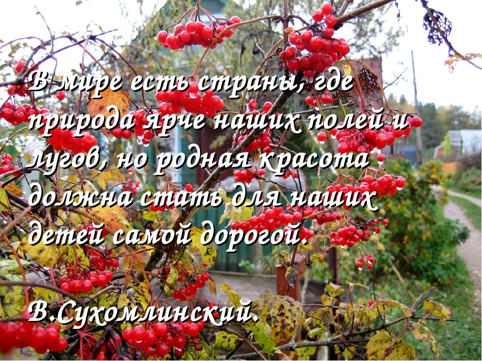 В мире есть страны, где природа ярче наших полей и лугов, но родная красота д...
