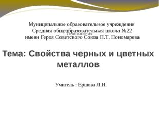 Муниципальное образовательное учреждение Средняя общеобразовательная школа №2