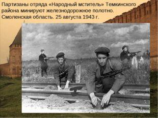 Партизаны отряда «Народный мститель» Темкинского района минируют железнодорож
