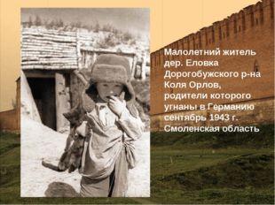 Малолетний житель дер. Еловка Дорогобужского р-на Коля Орлов, родители которо