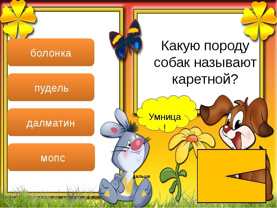 Умница! дальше болонка пудель далматин мопс Какую породу собак называют каре...