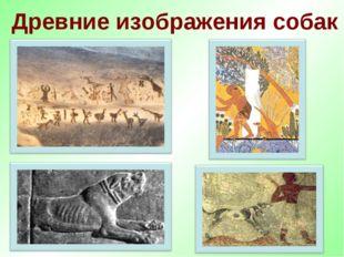 Древние изображения собак