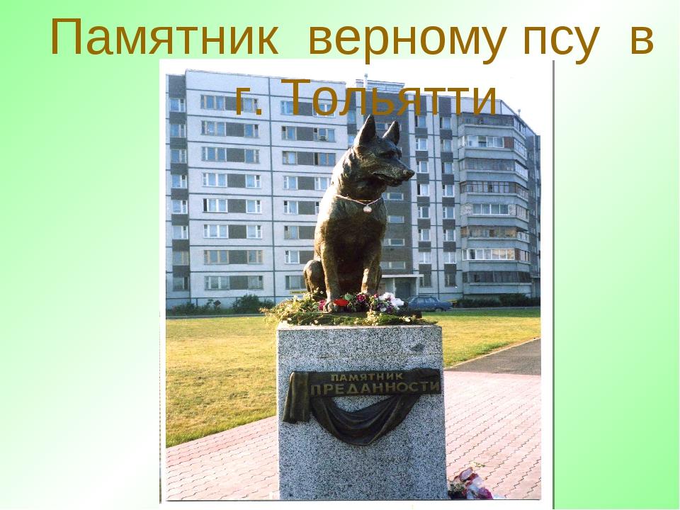 Памятник верному псу в г. Тольятти