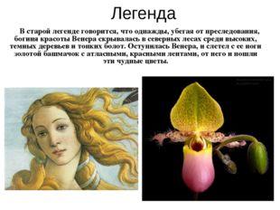 В старой легенде говорится, что однажды, убегая от преследования, богиня кра